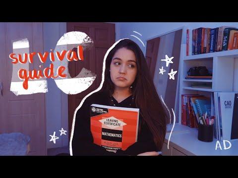Exam Survival Guide // Leaving Cert