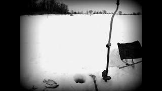 В БЕСКЛЁВЬЕ ВЫРУЧАЕТ МУХА Зимняя рыбалка 2020 День 3 поклевки есть