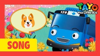 [Tayo Nursery Rhymes] #14 Oh Where Oh Where Has My Little Dog Gone