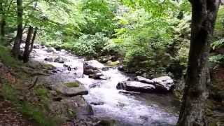 Фото Стара река в Стара планина, България