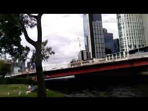 A walk on the banks of Yarra River - Southbank, Melbourne!