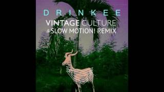 SOFI TUKKER - Drinkee (Vintage Culture  Slow Motion! Remix) [Official Audio]