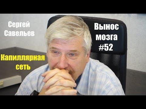 «Капиллярная сеть» Сергей Савельев (Вынос мозга #52)