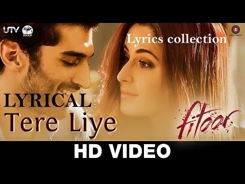 Tere Liye Full Song With Lyrics – Fitoor   Sunidhi Chauhan, Jubin Nautiyal