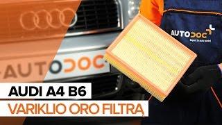 Alyvos filtras keitimas VOLVO C70 I Convertible - vadovas