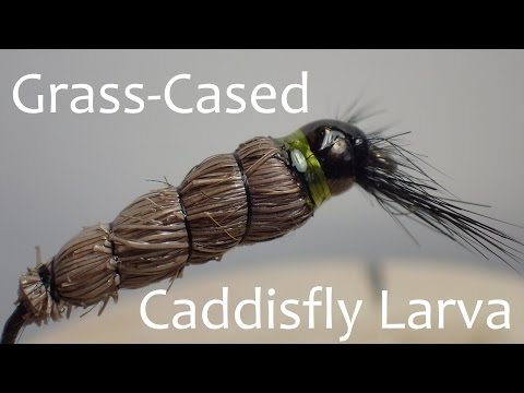 Grass-cased Caddisfly Larva Fly Pattern