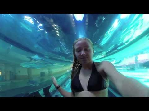 GoPro - Zoey's Golden Nugget Shark Tank (Pool) experience