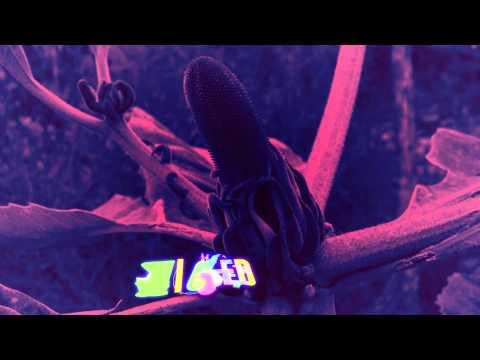 Veronica Vega - Wicked (Lyric Video) feat. Pitbull