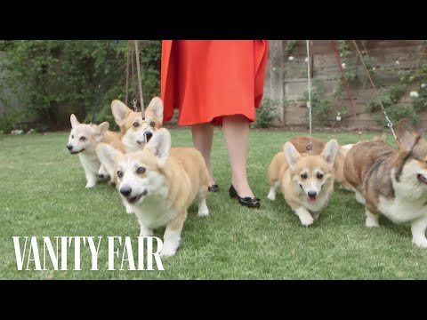 Meet the Queen's Royal Corgis | Vanity Fair