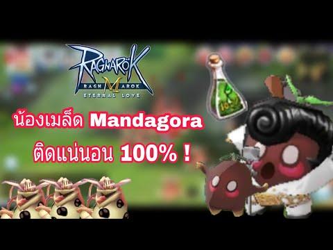 [Ragnarok M] - วิธีจับ Mandagora ติดแน่นอน 100% + แนะนำเว็ปและวิธีเติมเงินเกมง่ายๆ