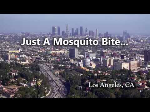 West Nile in Los Angeles: Only Takes One Bite