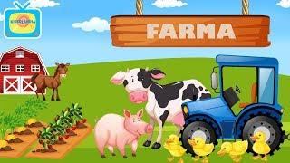 Zwierzęta na wsi- Odgłosy zwierząt- Owoce i warzywa- FARMA