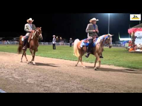 Missouri Fox Trotter World Grand Championship 3yr.Open 2015