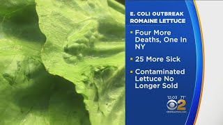 New Yorker's Death Connected To E-Coli Outbreak Linked To Romaine Lettuce