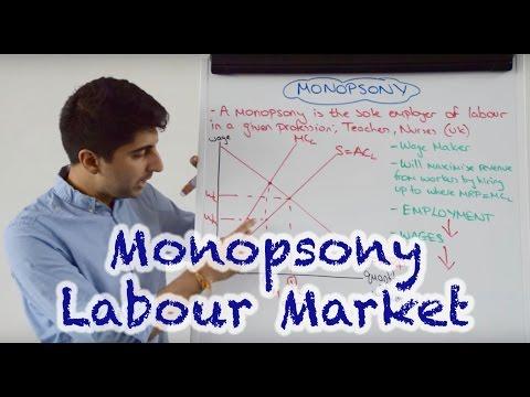 Monopsony - Labour Market Impact