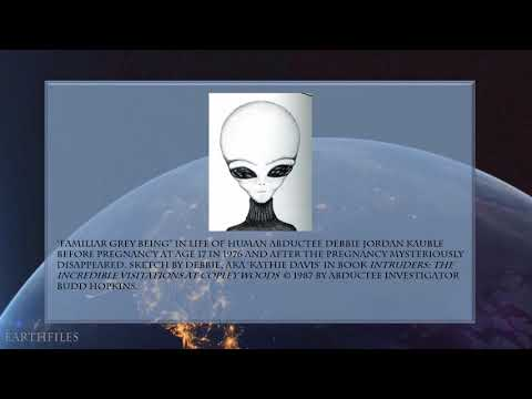 Linda Moulton Howe Interview with Debbie Jordan Kauble: Disappearing Pregnancy in Human Abduction