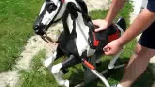 Mattel's Blaze the Talking Horse