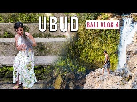 Monkeys of Ubud Monkey Forest! Tegenungan Waterfall | Solo Girl in Bali, Indonesia ! Bali Vlog #4