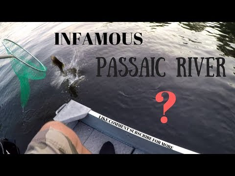 Fishing The Passaic River For The First Time (North Jersey)