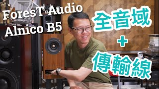 全音域+傳輸線!實試ForesT Audio Alnico B5