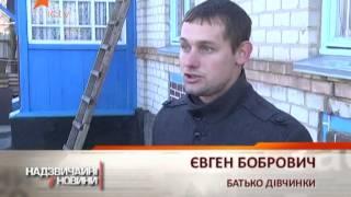 Хозяин убитой собаки отомстил за питомца - Чрезвычайные новости - 19.11.2013