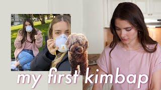 Baixar Let's Make Kimbap & Picnic Vlog