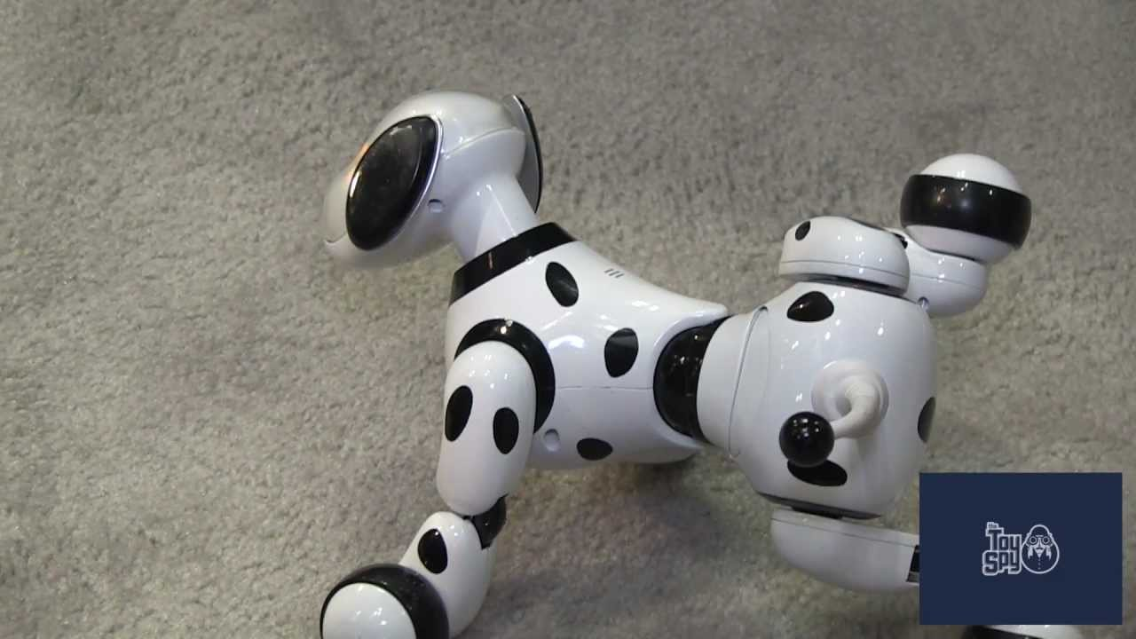 Zoomer The Dog 2013 New York Toy Fair The Toy Spy Youtube