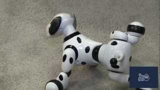Zoomer The Dog - 2013 New York Toy Fair - The Toy Spy