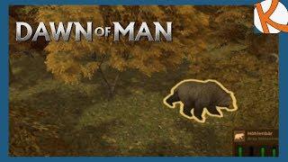 Ein Höhlenbär bringt unsere Leute um! • Dawn of Man #03