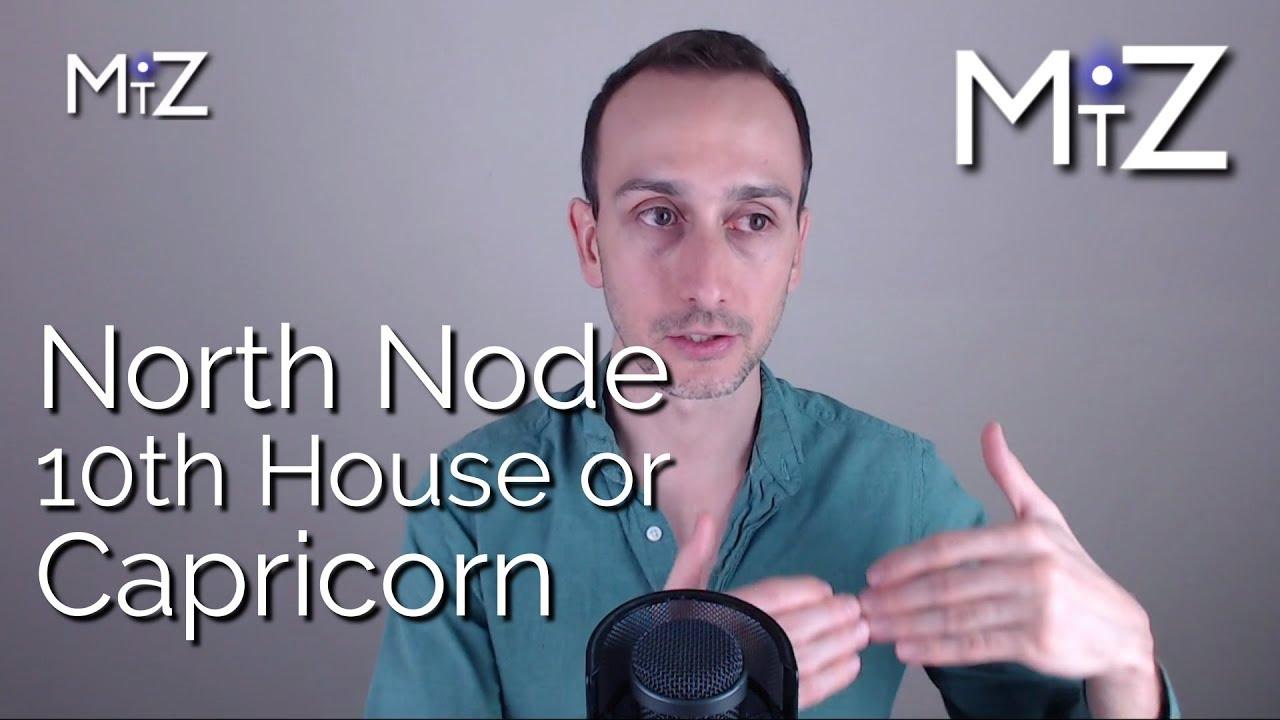 North Node 10th House or Capricorn / South Node 4th House or Cancer (Rahu &  Ketu)