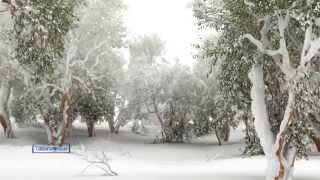 Paul Mauriat - Tombe La Neige...