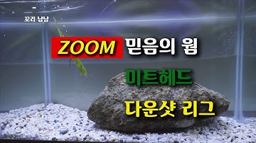 줌 미트헤드 다운샷 리그 수중 루어 액션(ZOOM Meat Head Down Shot League Underwater Lure Action)