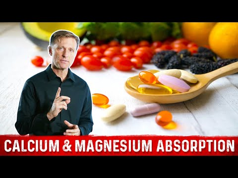 Calcium And Magnesium Absorption Basics | Dr. Berg