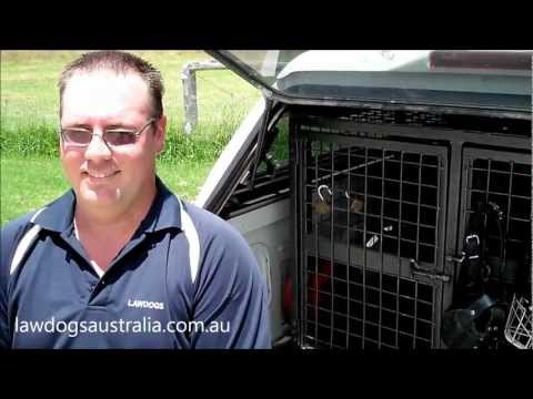 German Shepherd Law Dogs Training - Stanthorpe Queensland Australia