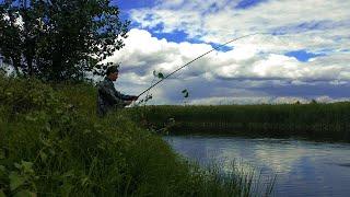 БЕШЕНЫЙ КЛЁВ КАРАСЯ Как ловить карася в сентябре Рыбалка на маховую удочку и донку