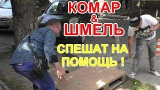 РОСАВТОДОР !  Комар и Шмель спешат на помощь !!   Краснодар