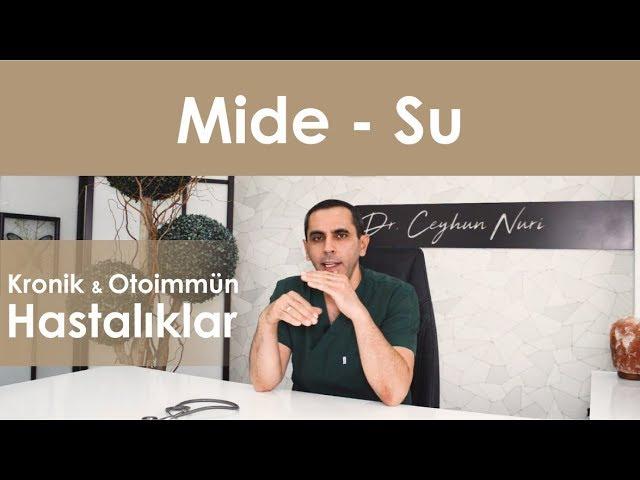 Mide – Su İlişkisi / Kronik ve Otoimmün Hastalıklar - Sağlıklı Bilgi - Dr. Ceyhun Nuri