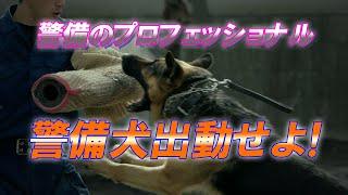警備のプロフェッショナル 警備犬出動せよ!【東京動画スペシャル番組】