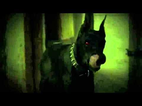 Trailer do filme Floresta Negra
