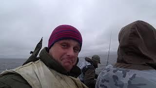 Удачная рыбалка на хищника в Карелии! Сямозеро! Ламповое видео