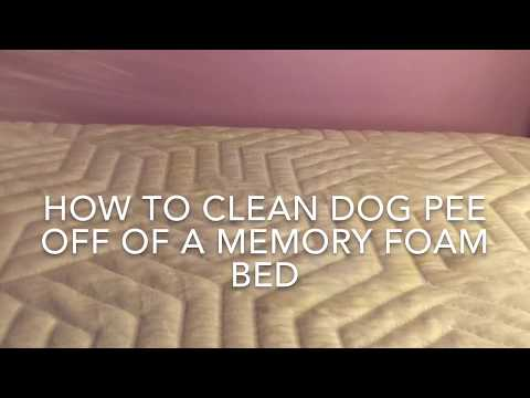 How Clean Urine From A Memory Foam Mattress