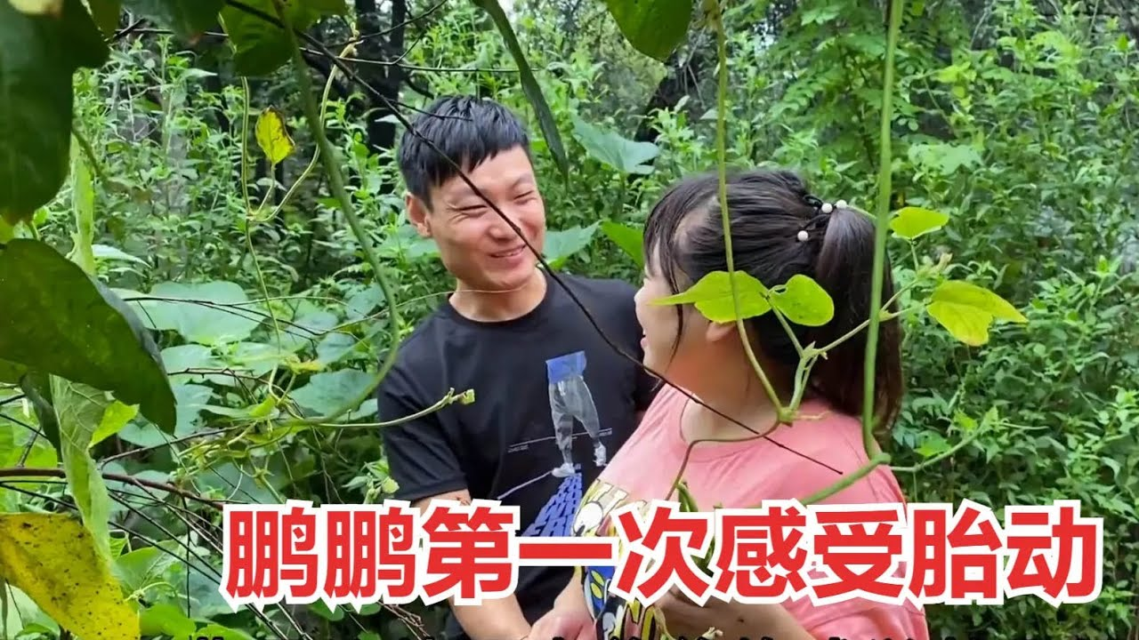 小夫妻菜园摘菜,鹏鹏第一次感受强烈胎动,俩人脸上的幸福藏不住
