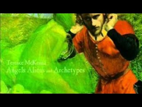 Terence McKenna - Aliens and Archetypes