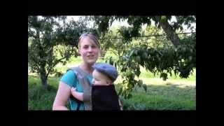 Claremont Ranch Organics Pear And Arugula Salad