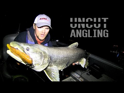 High Tech Lake Trout - Uncut Angling - October 10, 2015