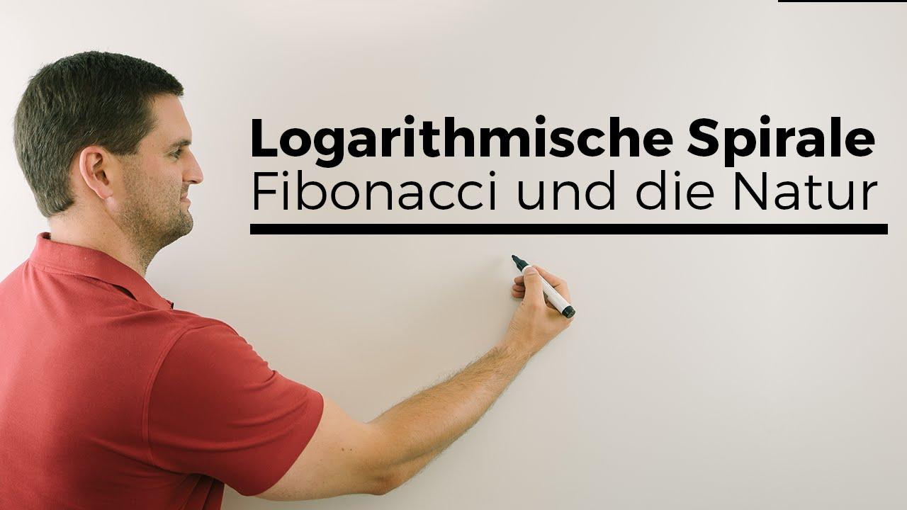 logarithmische spirale fibonacci und die natur mathematik im alltag mathe by daniel jung. Black Bedroom Furniture Sets. Home Design Ideas
