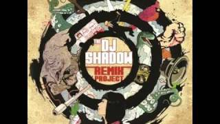 DJ Shadow - Organ Donor (Flirtphonic Remix)