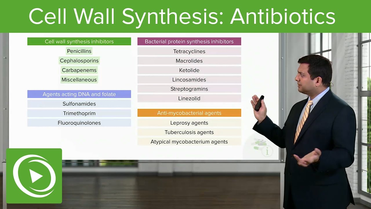 Cell Wall Synthesis Inhibitors: Antibiotics – Antimicrobial Pharmacology | Lecturio