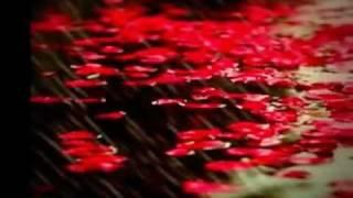 Yang Ku Tahu Cinta Itu Indah - Afgan ft Nagita (Lyric)