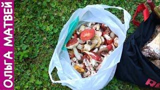 Сыроежки В Кляре - Вкусно и Просто!!!! | Fried Mushrooms Recipe